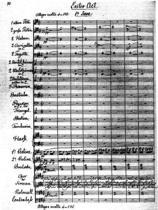 A lithograph of music by Richard Wagner in the composer's own handwriting.